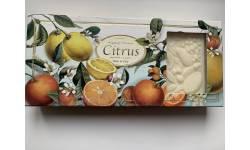 Dárková kazeta CITRUS 3 x 125g